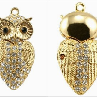 Disk on Ring Owl
